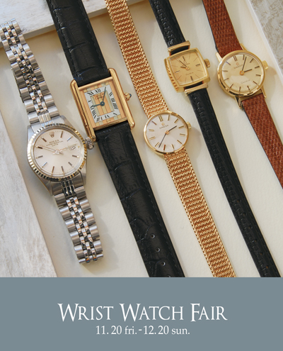 wrist-watch-fair-myroad