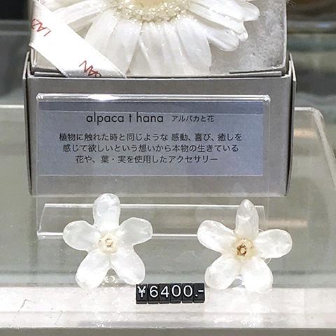 alpaca to hana(アルパカと花)