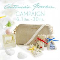 fragrance_handbira_thum